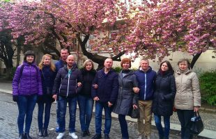 "Excursion ""Sakura and primroses in Transcarpathia"" (2017)"